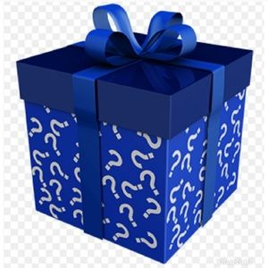 Boy's Choose Your Category Reseller Mystery Box